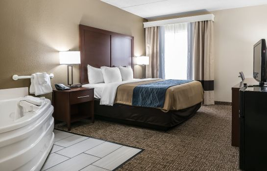 Zimmer Comfort Inn Indianapolis North - Carmel