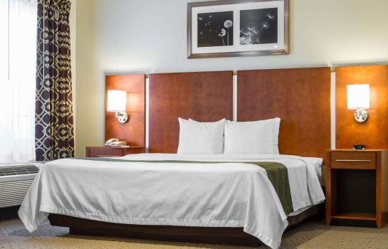 Chambre Quality Inn Silicon Valley