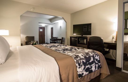 Chambre SLEEP INN AND SUITES FT. LAUDERDALE INTE