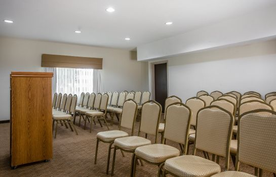 Sala de reuniones Sleep Inn McDonough