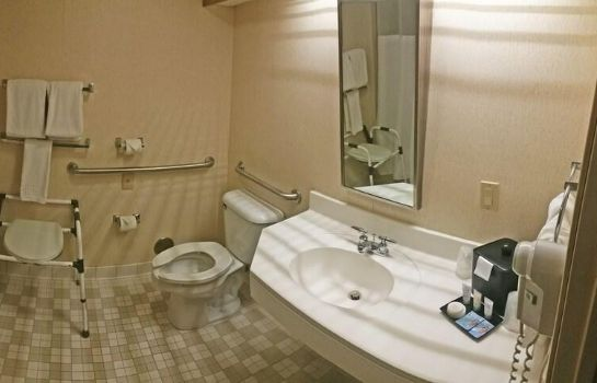 Bagno in camera Charlevoix Inn & Suites