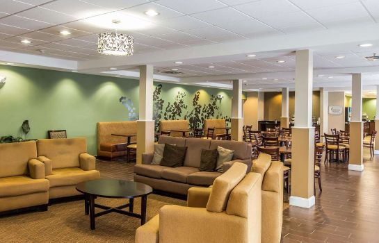 Hotelhalle Sleep Inn & Suites Mount Olive