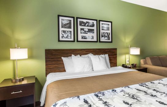 Suite Sleep Inn and Suites Mount Olive North