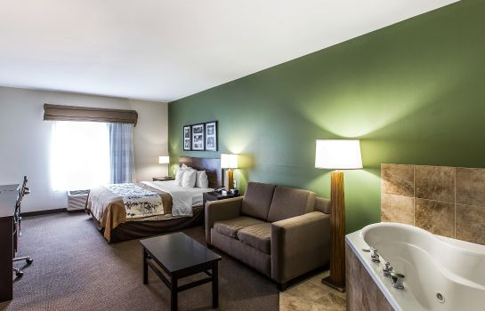 Habitación Sleep Inn & Suites Mount Olive