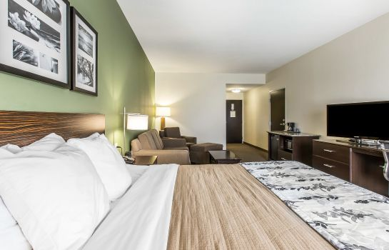 Chambre Sleep Inn & Suites Mount Olive