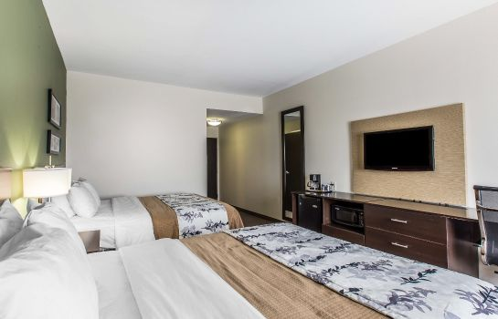 Habitación Sleep Inn and Suites Mount Olive North