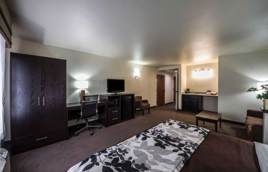 Info Sleep Inn & Suites Central/I-44