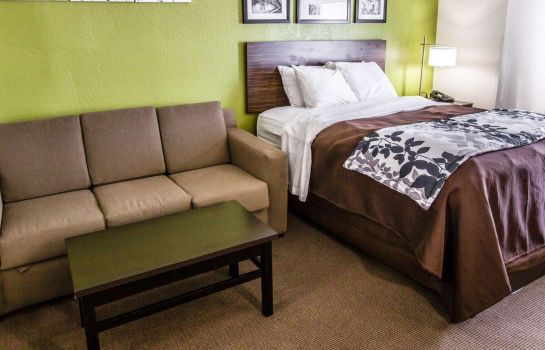 Zimmer Sleep Inn & Suites near Outlets