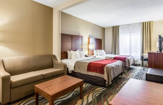 Suite Comfort Inn and Suites Lookout Mountain