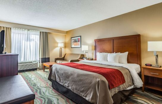 Chambre Comfort Inn & Suites Lookout Mountain