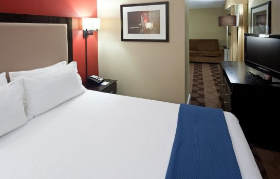 Suite Holiday Inn Express & Suites BOSTON GARDEN
