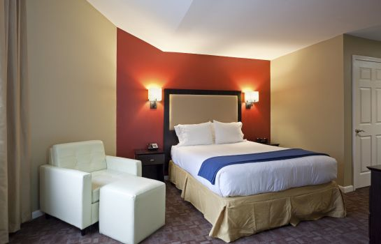 Zimmer Holiday Inn Express & Suites BOSTON GARDEN