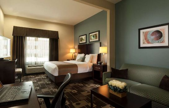 Zimmer BEST WESTERN PLUS JFK INN STS