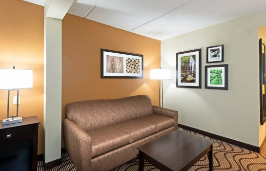 Zimmer La Quinta Inn and Suites Tampa North I-75