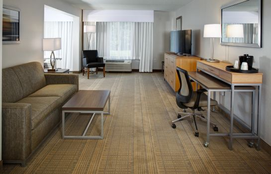 Chambre individuelle (standard) Holiday Inn FRANKLIN - COOL SPRINGS