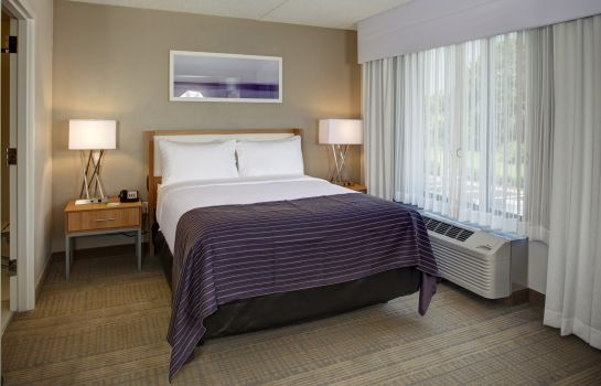 Pokój dwuosobowy (standard) Holiday Inn FRANKLIN - COOL SPRINGS