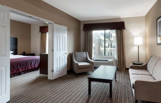 Suite WINGATE HOUSTON WILLOWBROOK