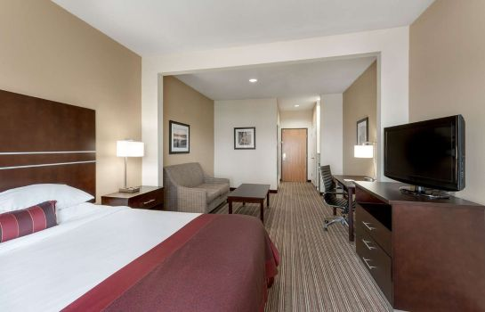 Room Wingate by Wyndham Houston / Willowbrook Wingate by Wyndham Houston / Willowbrook