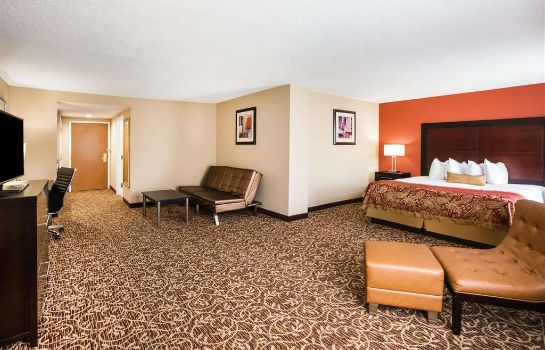Suite Wingate by Wyndham Atlanta Galleria/Ballpark