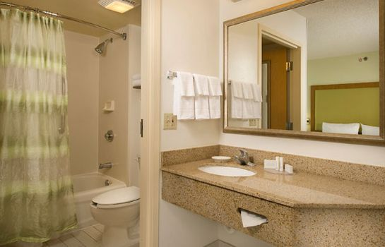 Room SpringHill Suites Miami Airport South