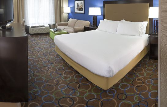 Zimmer Holiday Inn Express & Suites MANCHESTER-AIRPORT