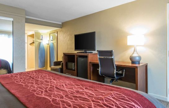 Suite Comfort Inn Central