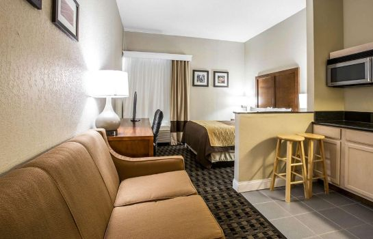 Suite Comfort Inn & Suites Roper Mountain Road