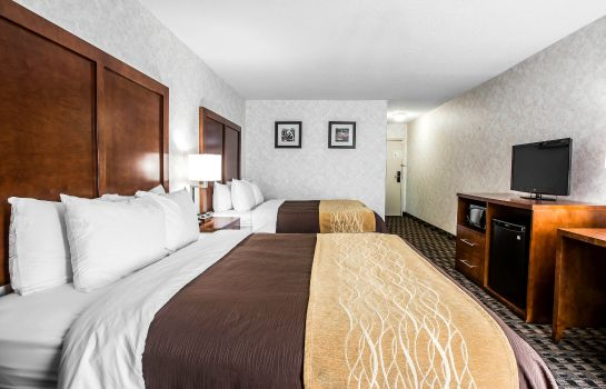 Zimmer Comfort Inn & Suites Roper Mountain Road