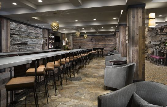 Hotel bar Crowne Plaza Hotels & Resorts ASHEVILLE