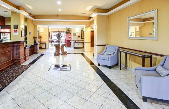 Lobby Comfort Suites Texas Ave.