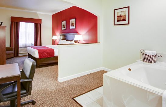 Room Comfort Suites Texas Ave.
