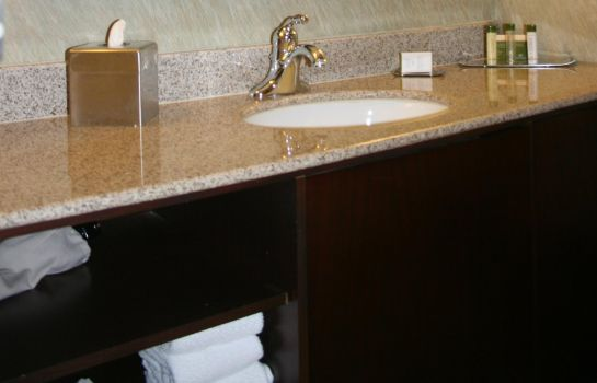 Zimmer Doubletree Hotel Houston Intercontinental Airport