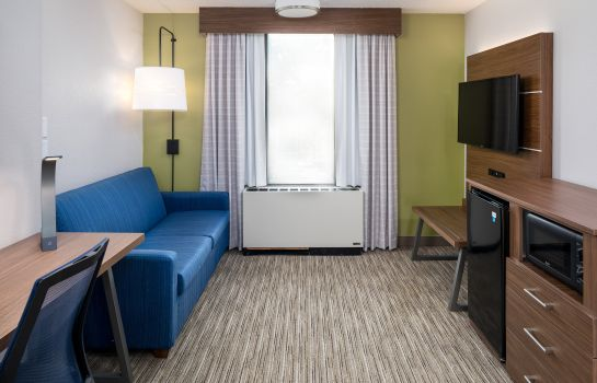 Suite Holiday Inn Express ATLANTA AIRPORT-COLLEGE PARK