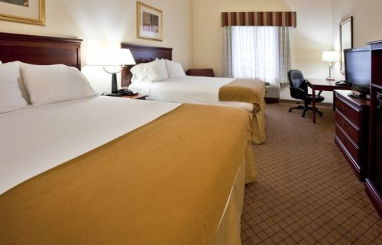 Zimmer Holiday Inn Express & Suites ST. PETERSBURG NORTH (I-275)