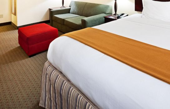 Suite Holiday Inn Express KNOXVILLE-STRAWBERRY PLAINS