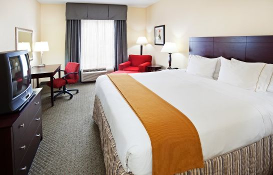 Kamers Holiday Inn Express KNOXVILLE-STRAWBERRY PLAINS