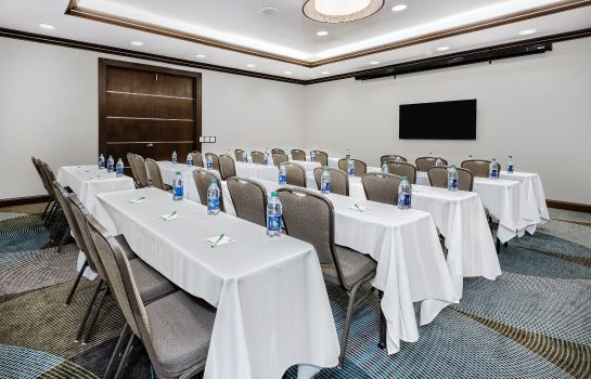 Conference room Holiday Inn & Suites COLLEGE STATION-AGGIELAND