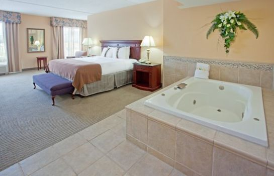 Zimmer Holiday Inn & Suites COLLEGE STATION-AGGIELAND