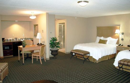 Suite Hampton Inn - Suites Albany-Downtown