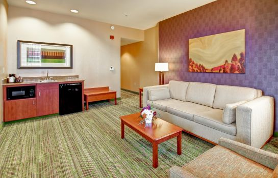 Suite Hampton Inn - Suites Denver-Downtown