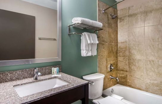 Suite Clarion Inn and Suites Atlanta