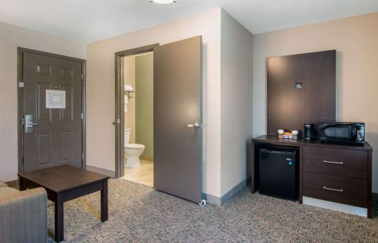 Suite Clarion Inn & Suites Atlanta Downtown