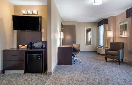 Zimmer Clarion Inn & Suites Atlanta Downtown