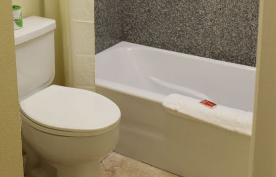 Cuarto de baño Econo Lodge College Station