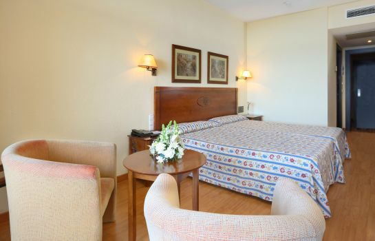 Double room (standard) Gran Cervantes by Blue Sea