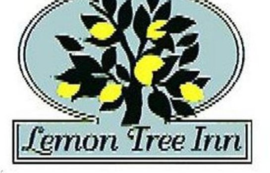 Info LEMON TREE INN