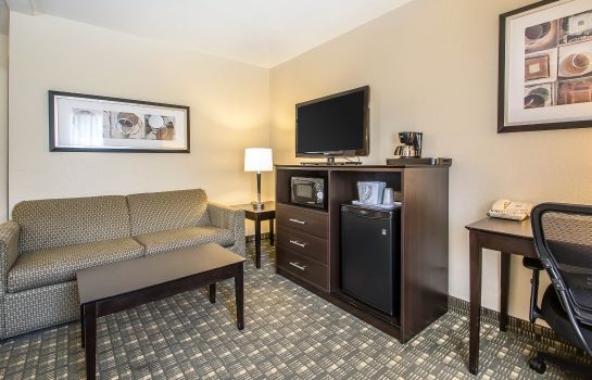Suite Quality Inn & Suites Decorah