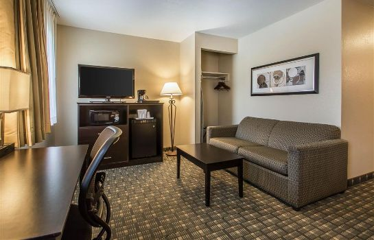 Suite Quality Inn and Suites Decorah