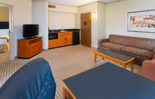 Suite Holiday Inn Express & Suites IRVING DFW AIRPORT NORTH