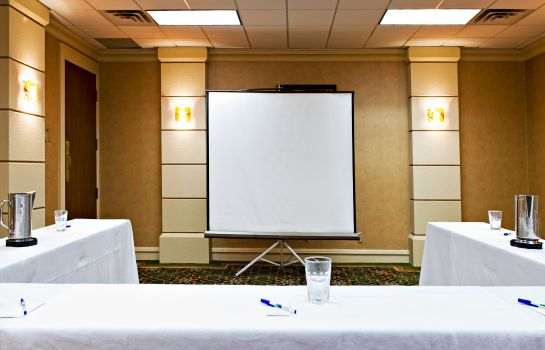 Sala de reuniones Holiday Inn Express & Suites IRVING DFW AIRPORT NORTH